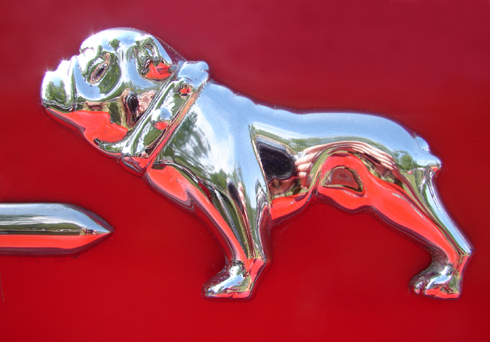 Mack Bulldog Imagery Of Light