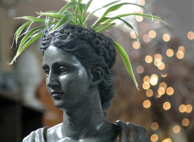 Statue head planter