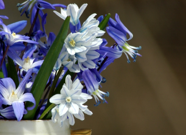 Mini Spring Bouquet