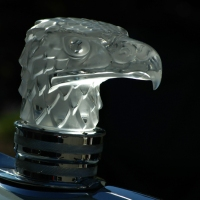 Lalique Eagle