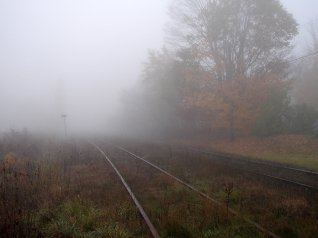Misty Train Tracks