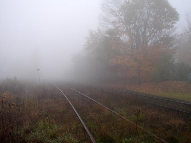 Misty Train Tracks