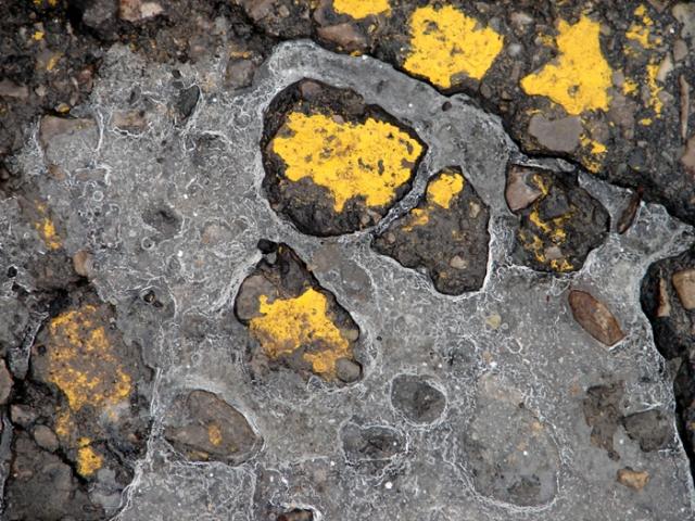 Yellow and Balck