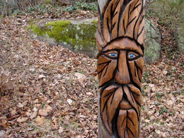 Face in the Woods