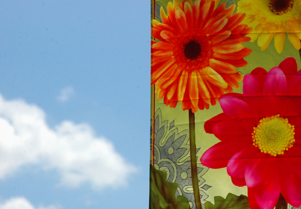 Banner and Sky