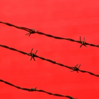 Barbed Wire on Red