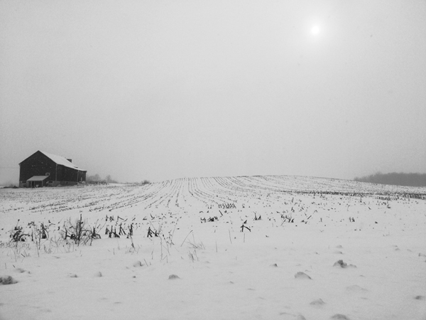 Snowing on Sunningdale