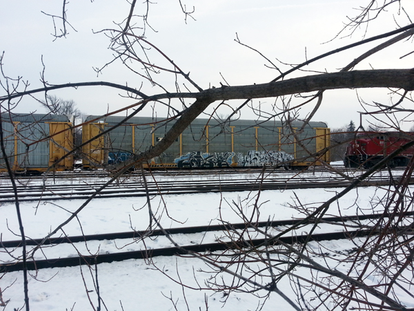 Rail Cars in Winter