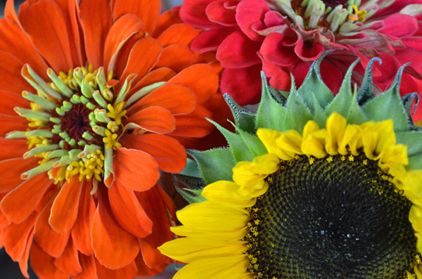 Market Bouquet II