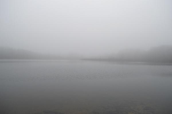 Walker's Pond