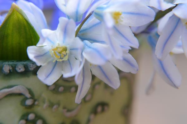 Pretty Little Spring Bouquet