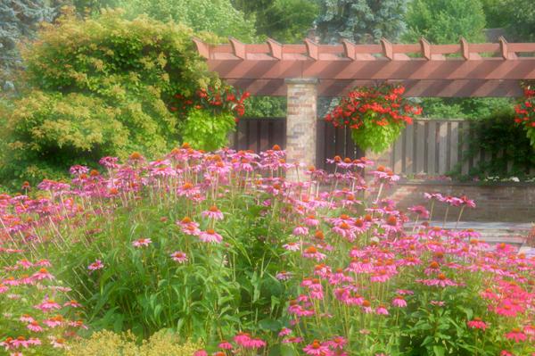 Civic Gardens