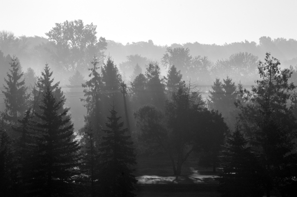 September Mist on Highway 21
