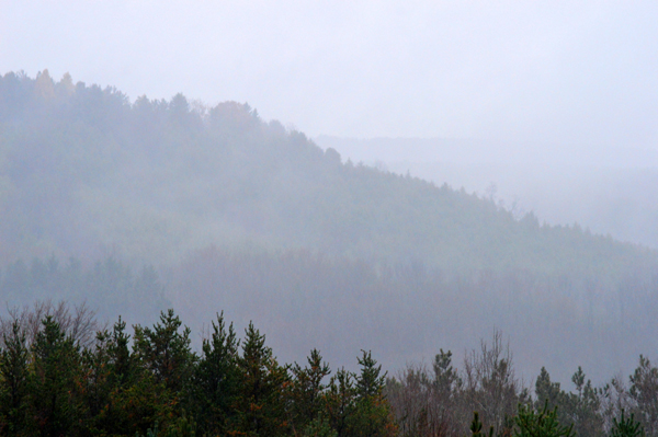 Hockley Hills