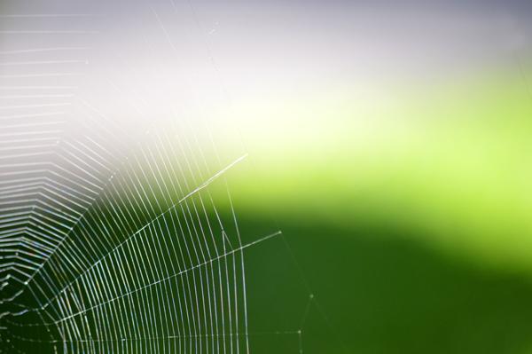 Web Angles