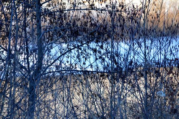River Bank Abstract