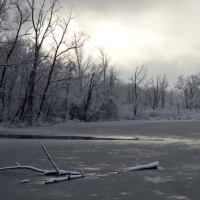 February Morning on Walkers Pond
