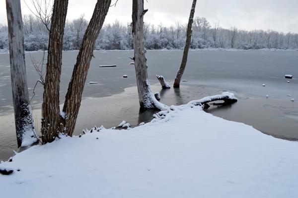 Snowy Pond Edge