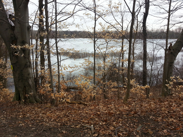 Looking Out Over Walkers Pond