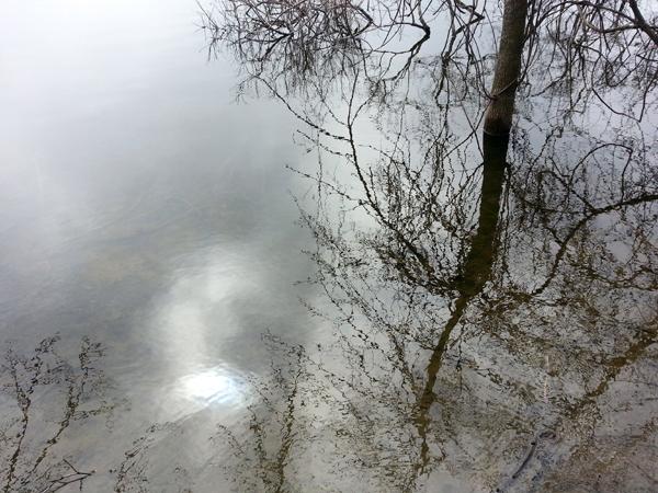 Spring Pond Grey
