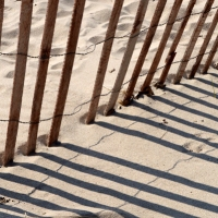 Beach Snow Fence