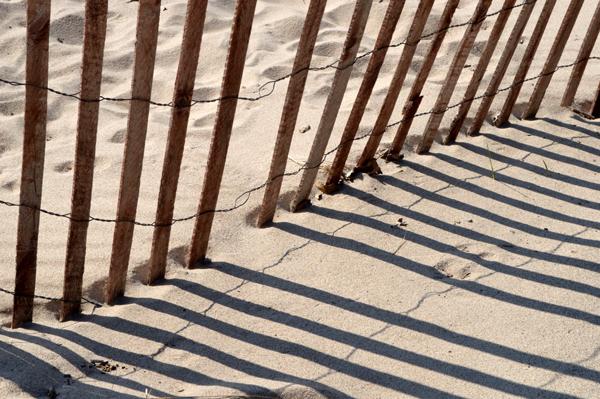Beach Snow Fence