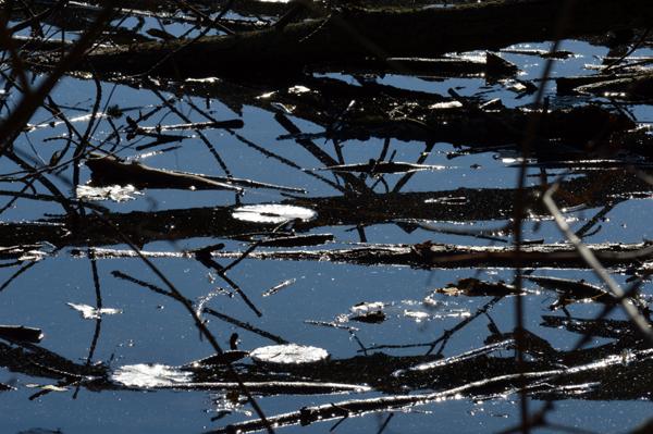 Pond Angles