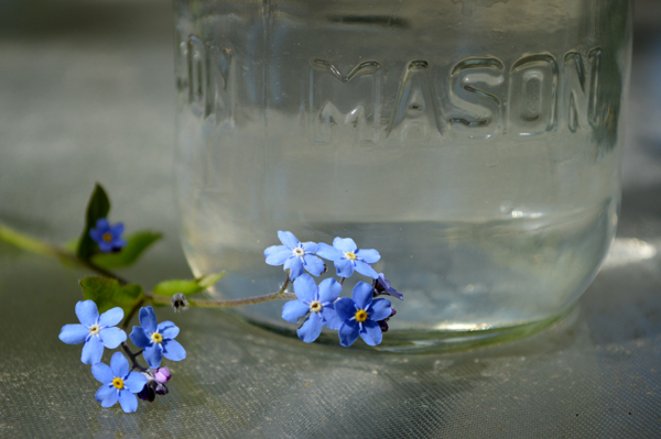 Pretty Little Spring Blue