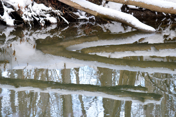 Creek Reflection II