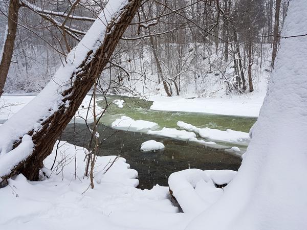Snowy Medway