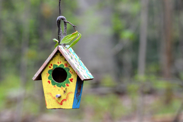 Mini Bird House