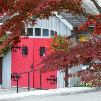Red Branches and Door